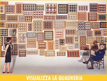 Viasualizza la Quadreria d'Arte di Giannetto Bravi